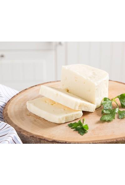Peynir çeşitleri Ve Fiyatları 27 Indirim
