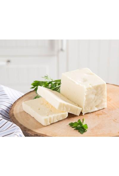 Çanakkaleden Ezine Koyun Peyniri 650 gr