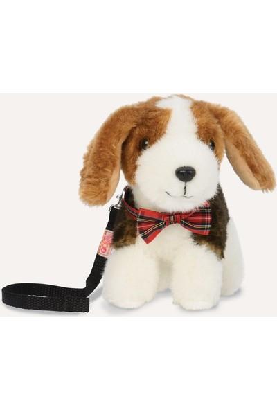 Our Generation Yavru Köpek - Beagle