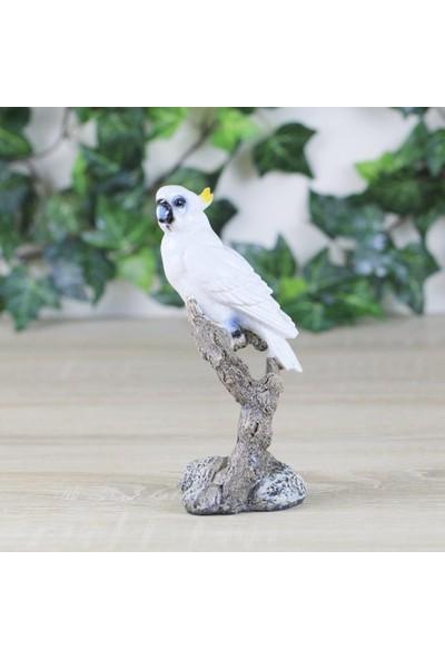 Ancel An304Yx007 Ağaç Dalında Beyaz Papağan Biblosu