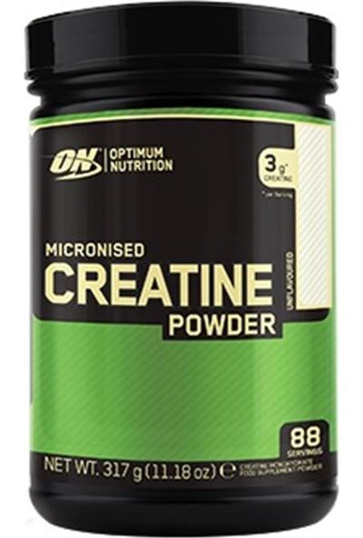 Optimum Nutrition Micronized Creatine Powder 317 Gr
