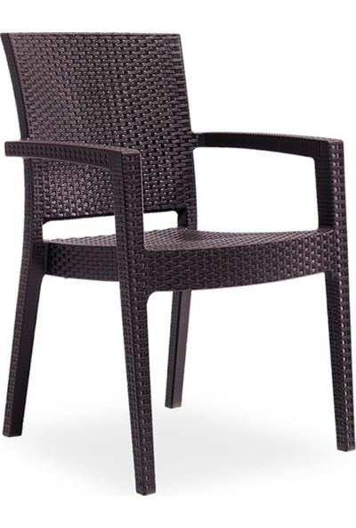 Ak Sandalye Novussi Paris Rattan Model Sandalye 4 Adet (Kahve Renk)