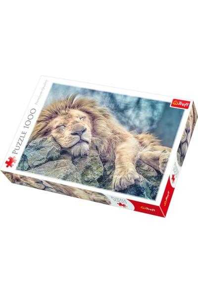 Trefl 1000 Sleeping Lion