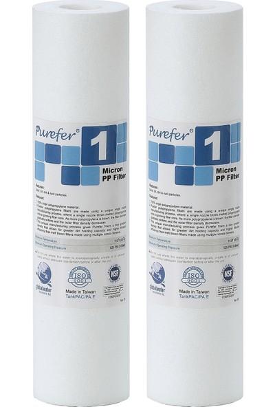 Global Water Solutions Kum ve Tortu Filtresi / 1 mikron (2 Adet)