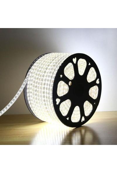 Odalight 220 V Şerit Led 220V Fiş Dahil 1 Metre Beyaz ışık
