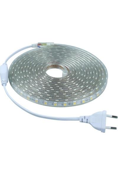 Odalight 220V. Şerit Led 5 Mt. (Fiş Takımı Dahil) Beyaz ışık