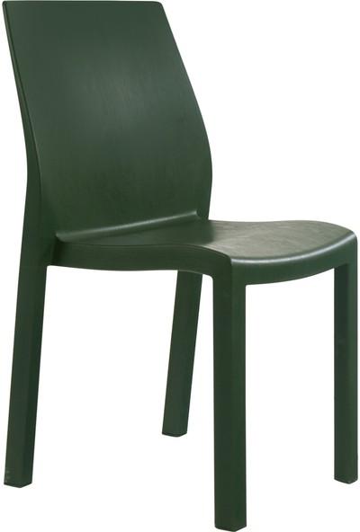 Papatya Tüm Renkler Yummy Çok Amaçlı Sandalye