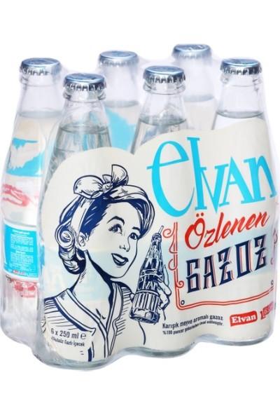 Elvan Gazoz Karışık Meyve Aromalı Cam Şişe 250 ml (6'lı)