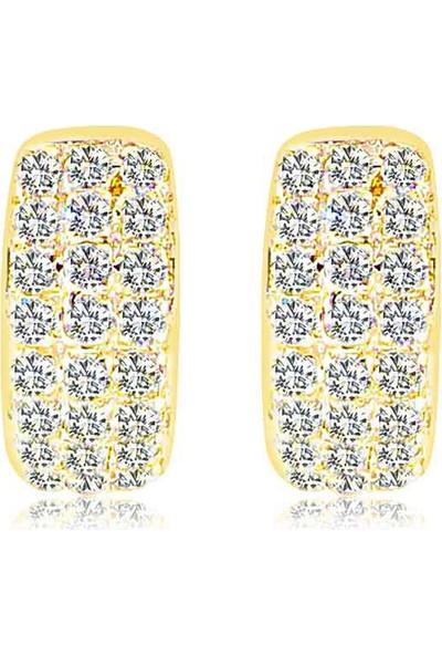 Cigold 14 Ayar Taşlı Küpe K1Küp000278