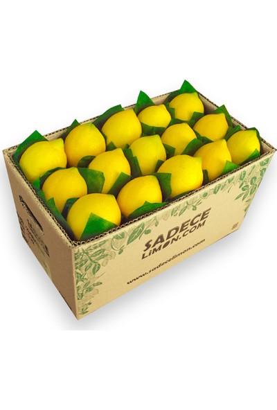 Sadece Limon Lamas Limon