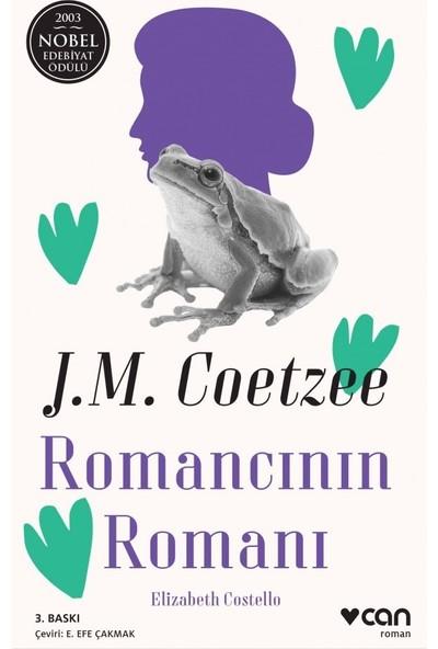 Romancının Romanı