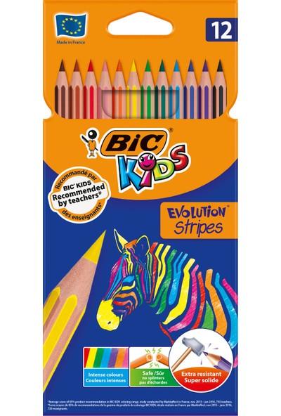 Evolution Stripes Kuru Boya Kalemi 12'Li Kutu