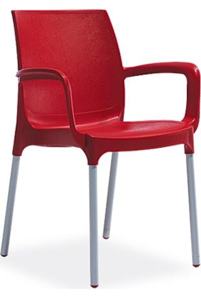 Novussi Sunset Model Sandalye 4 Adet Kırmızı Renk