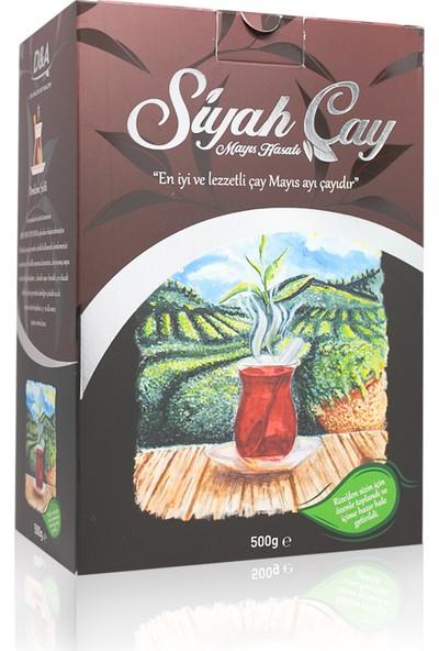 Doğal Ambar Mayıs Hasatı Siyah Çay 500 gr
