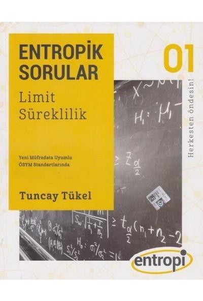 Entropik Sorular - Limit Ve SüreklilikTuncay Tükel
