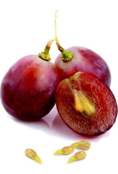 Tısserand Üzüm Çekirdeği (Grapeseed) Yağı 100 Ml Organik Ve Saf