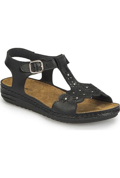 Polaris 81.158550.Z Siyah Kadın Basic Comfort