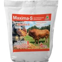 Optima Maxima-S Besi Yemi 30 kg ile Max Canlı Ağırlık Artışı
