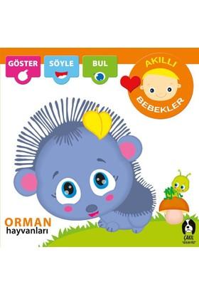 Akıllı Bebekler:Orman Hayvanları