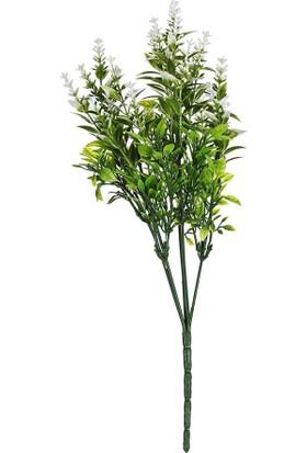 Vitale Beyaz Kır Çiçeği Demeti