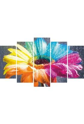 YediRenk Dekor Renkli Çiçek Dekoratif 5 Parça Mdf Tablo