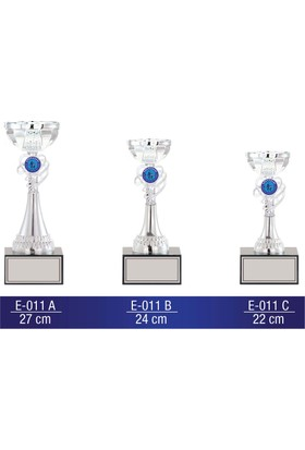 B-Sport E011 Kupa Takımı