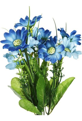 Vitale Begonya Şekerpare Mavi