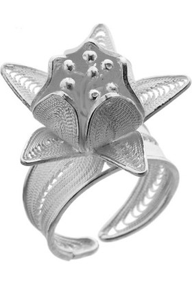 Misiny Aury Gümüş Telkari Yüzük