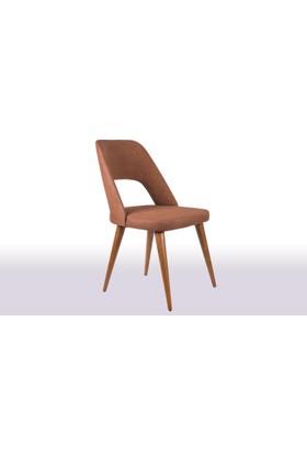 Krl Mobilya Maya Ceviz Ahşap Sandalye