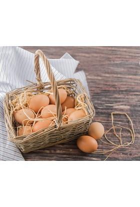 Çanakkaleden Köy Yumurtası 10 Adet