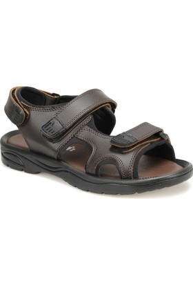 Panama Club Ck-53 Kahverengi Erkek Sandalet