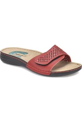 Polaris 81.156669.Z Kırmızı Kadın Basic Comfort