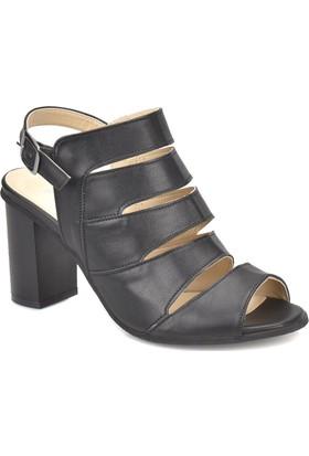 Polaris 81.309906.Z Siyah Kadın Basic Dress