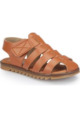 Polaris 81.510219.P Kahverengi Erkek Çocuk Basic Sandalet