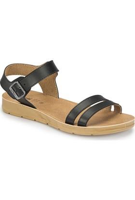 Polaris 81.158659.Z Siyah Kadın Basic Comfort Sandalet