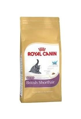 Royal Canin Yavru Kuru Kedi Mamaları Ve Fiyatları