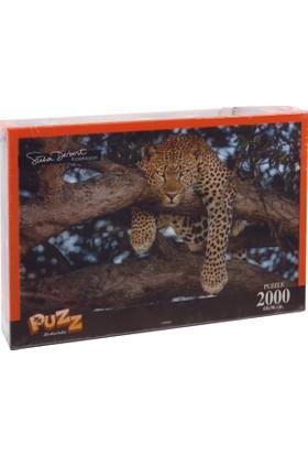 Puzz K.Color 70*100 2000 li Yapboz Leopar (Süha Derbent)