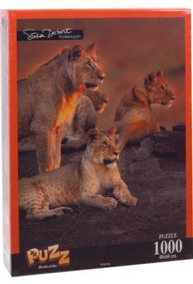 Puzz K.Color 68*48 1000 li Yapboz Aslanlar (Süha Derbent)