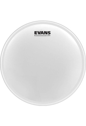 Evans B18UV1 18 Inc Kumlu Tom Derisi