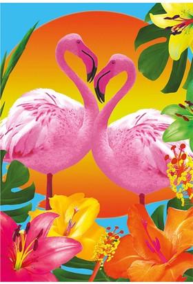 Educa Puzzle 500 Parça Flamingolar 17737