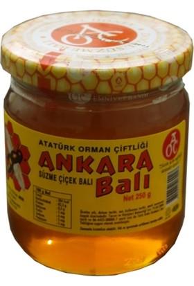 Atatürk Orman Çiftliği Süzme Ankara Çiçek Balı 480 Gr