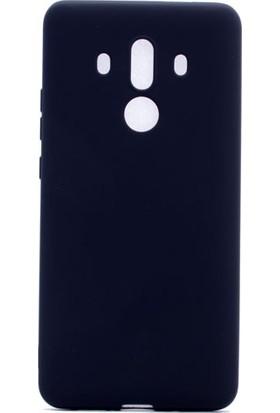Etabibizde Huawei Mate 10 Pro Kılıf Premier Yumuşak Silikon Arka Kapak Siyah + Nano Cam