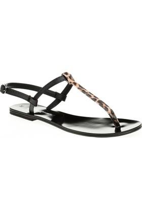 David Jones Kadın Parmak Arası Sandalet Leopar