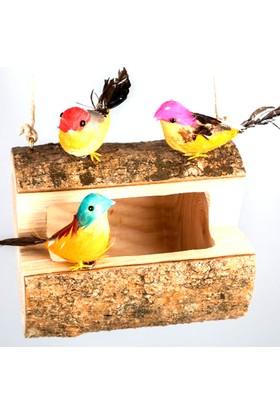 Comex El Yapımı Doğal Ahşap Oyma Kuş Yuvası (En 20 cm)