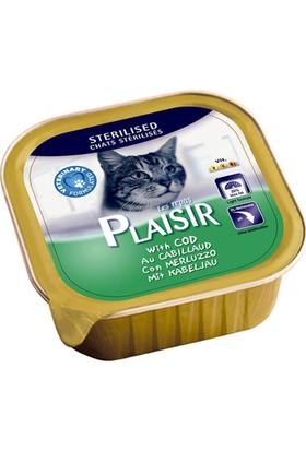 Plaisir 4'lü Morina Balıklı Pate Kısır Kedi Maması 100 Gr Tasma Hediyeli
