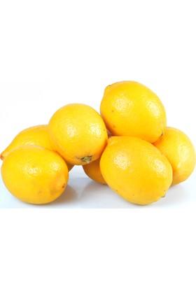 Doğal File Limon 1 kg