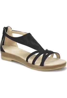 Miss F Ds18087 Siyah Kadın Sandalet