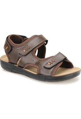 Panama Club Ef-3 Kahverengi Erkek Sandalet