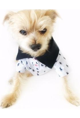 Kemique Siyah Beyaz Polo Desenli Polo Yaka Tişört By Köpek Kıyafeti Köpek Elbisesi