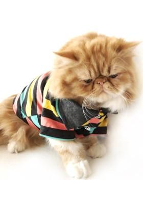 Kemique Raınbow Kedi Gömleği By